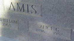 Alice G Amis