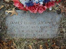 James Louis Arant