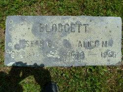 Alice M <i>Thompson</i> Blodgett
