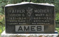 Mary Ann <i>McManus</i> Ames