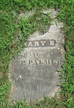 Mary S Palmer