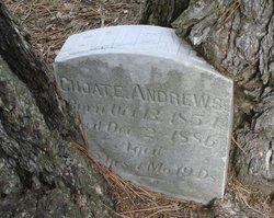 Ellen J. <i>Choate</i> Andrews