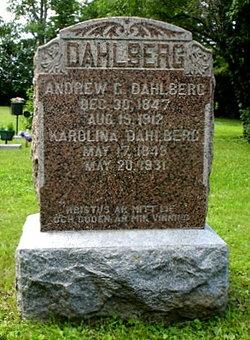 Andrew G Dahlberg
