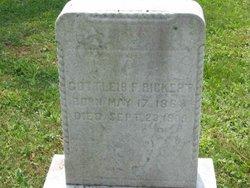 Gottlieb F. Rickert
