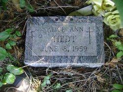 Alice Ann Tiedt