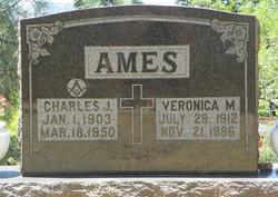 Veronica M Verda <i>Slupstick</i> Ames