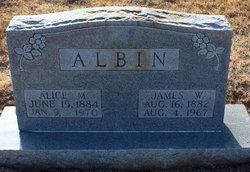 Alice M Albin