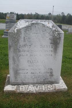 David M Davis