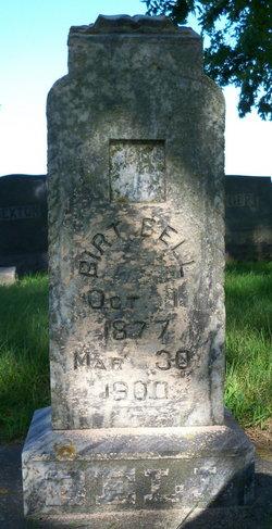 Albert Birt Bell