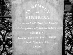 Silbernia <i>Redus</i> Coats