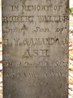 Robert Walter Ash