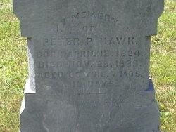 Peter P Hawk