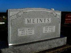 Abbie Meints