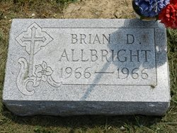 Brian D. Allbright