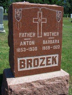 Anton Brozek