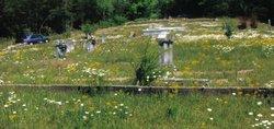 Alta Cemetery