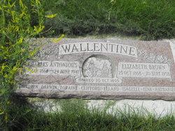 Charles Anthony Wallentine