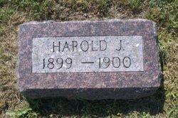 Harold J Hodge