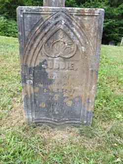 Juddie Baird