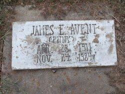 James Edward Avent