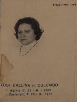 Evelina <i>Tosi</i>