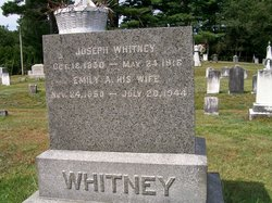 George David Whitney