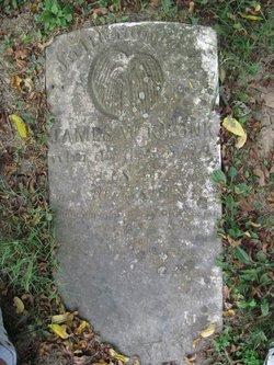 James William Kronk