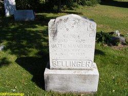 George Bellinger
