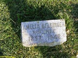 Amelia <i>Bellinger</i> Piddock