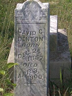 David C Denton