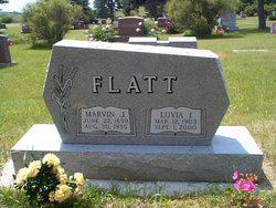 Luvia Irene <i>McKay</i> Flatt