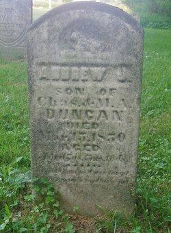 Andrew J Duncan