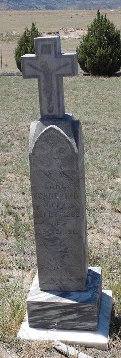Earl Schnevind