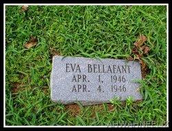 Eva Bellafant