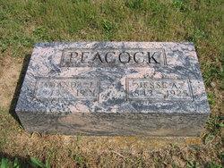 Jesse A. Peacock
