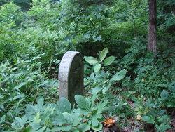 Funk-Schlansker Cemetery