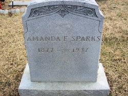 Amanda E. Sparks