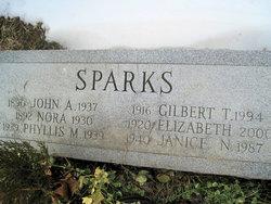 John A Sparks