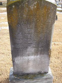 William S Sparks