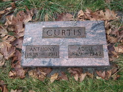 Anthony Curtis