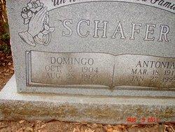 Domingo Schafer