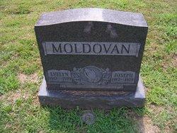 Evelyn Moldovan