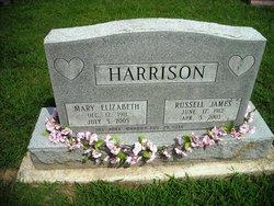 Mary Elizabeth <i>Parr</i> Harrison