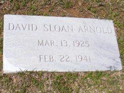 David Sloan Arnold