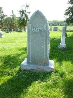 Addison Adams