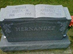 Efilia <i>Molinar</i> Hernandez