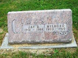 Jay B Gibbs