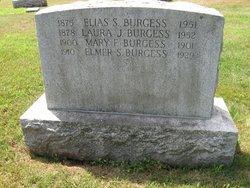 Elias Sylvester Burgess, Sr