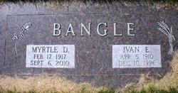 Myrtle D <i>Bye</i> Bangle