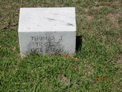 Thomas J Tinsley